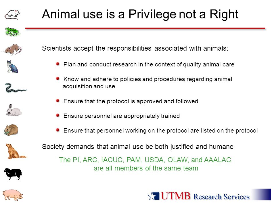Animal use is a Privilege not a Right Scientists accept the responsibilities associated with animals: Plan and conduct research in the context of qual
