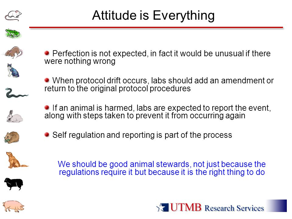 Attitude is Everything Perfection is not expected, in fact it would be unusual if there were nothing wrong When protocol drift occurs, labs should add an amendment or return to the original protocol procedures If an animal is harmed, labs are expected to report the event, along with steps taken to prevent it from occurring again Self regulation and reporting is part of the process We should be good animal stewards, not just because the regulations require it but because it is the right thing to do