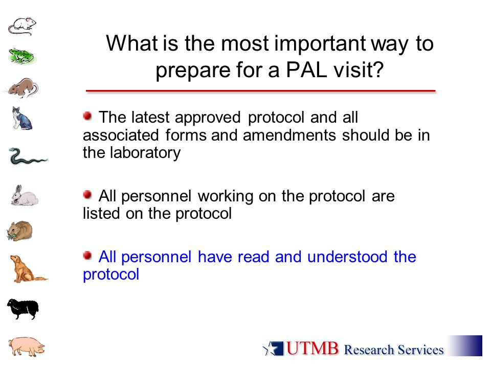 What is the most important way to prepare for a PAL visit? The latest approved protocol and all associated forms and amendments should be in the labor