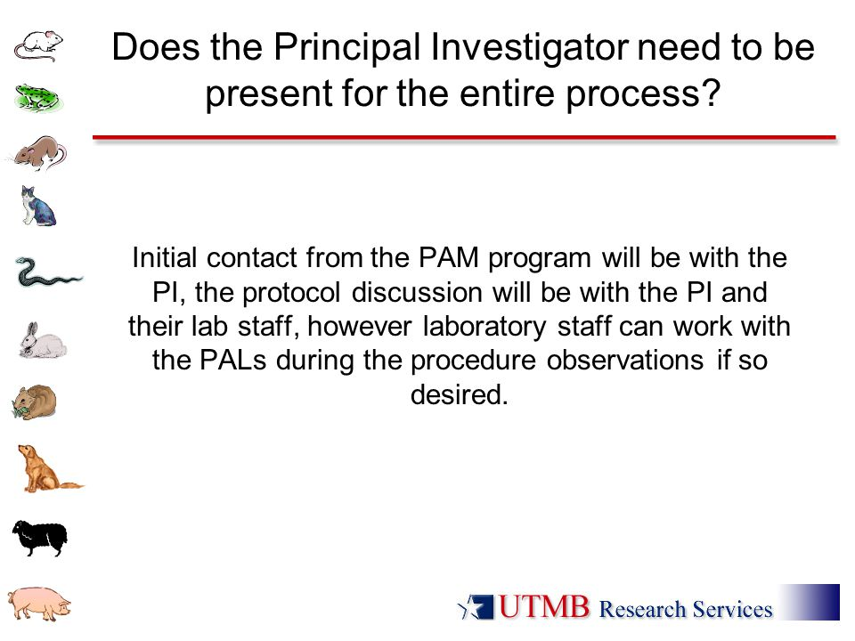 Does the Principal Investigator need to be present for the entire process? Initial contact from the PAM program will be with the PI, the protocol disc
