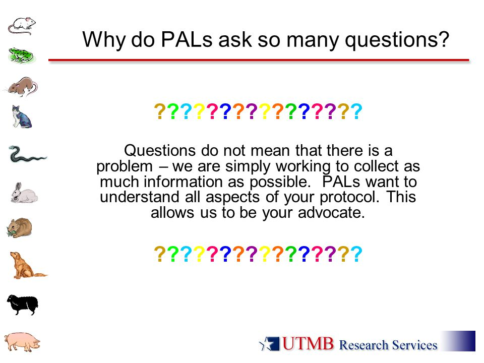 Why do PALs ask so many questions? ???????????????? Questions do not mean that there is a problem – we are simply working to collect as much informati