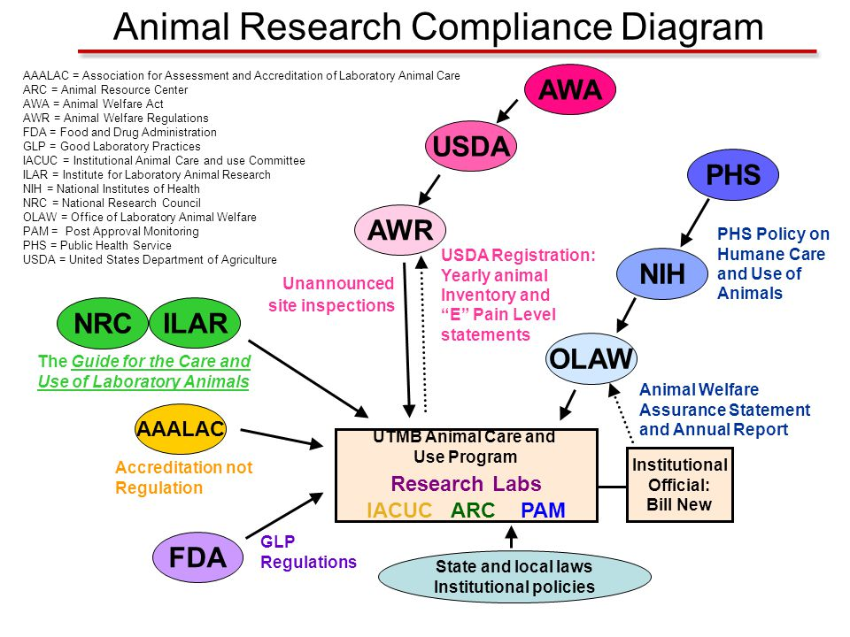AAALAC = Association for Assessment and Accreditation of Laboratory Animal Care ARC = Animal Resource Center AWA = Animal Welfare Act AWR = Animal Wel