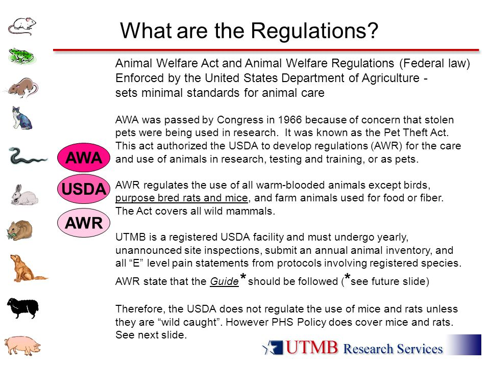 What are the Regulations? Animal Welfare Act and Animal Welfare Regulations (Federal law) Enforced by the United States Department of Agriculture - se