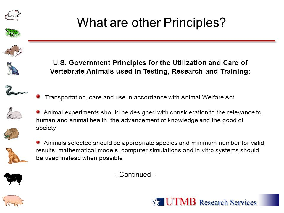 What are other Principles? U.S. Government Principles for the Utilization and Care of Vertebrate Animals used in Testing, Research and Training: Trans
