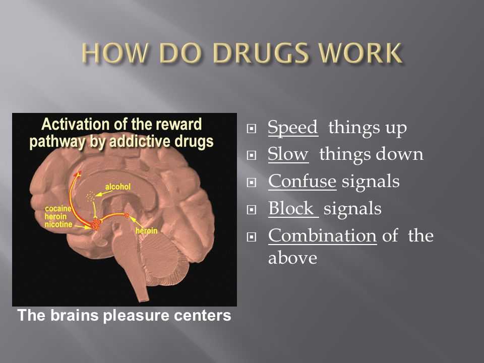  Speed things up  Slow things down  Confuse signals  Block signals  Combination of the above The brains pleasure centers