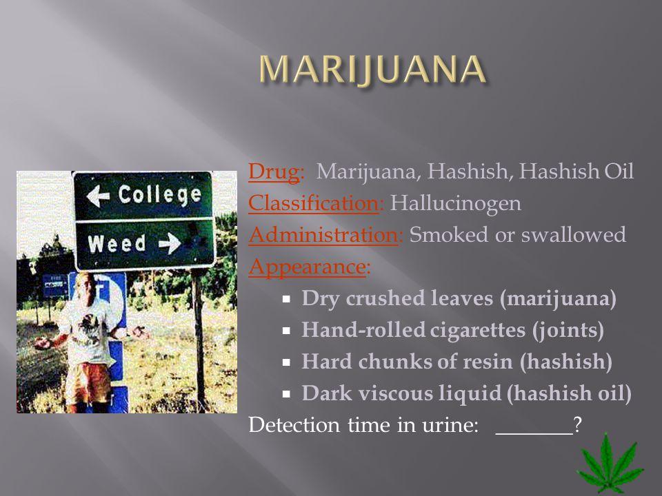 Drug: Marijuana, Hashish, Hashish Oil Classification: Hallucinogen Administration: Smoked or swallowed Appearance:  Dry crushed leaves (marijuana) 