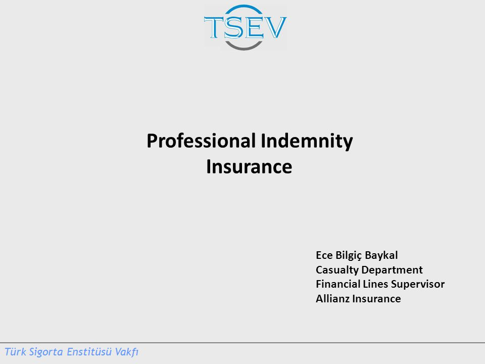 Ece Bilgiç Baykal Casualty Department Financial Lines Supervisor Allianz Insurance Professional Indemnity Insurance