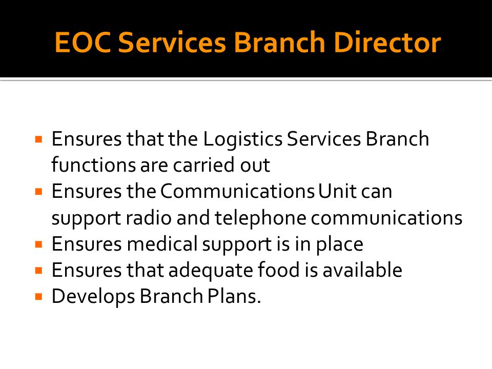  Ensures that the Logistics Services Branch functions are carried out  Ensures the Communications Unit can support radio and telephone communications  Ensures medical support is in place  Ensures that adequate food is available  Develops Branch Plans.
