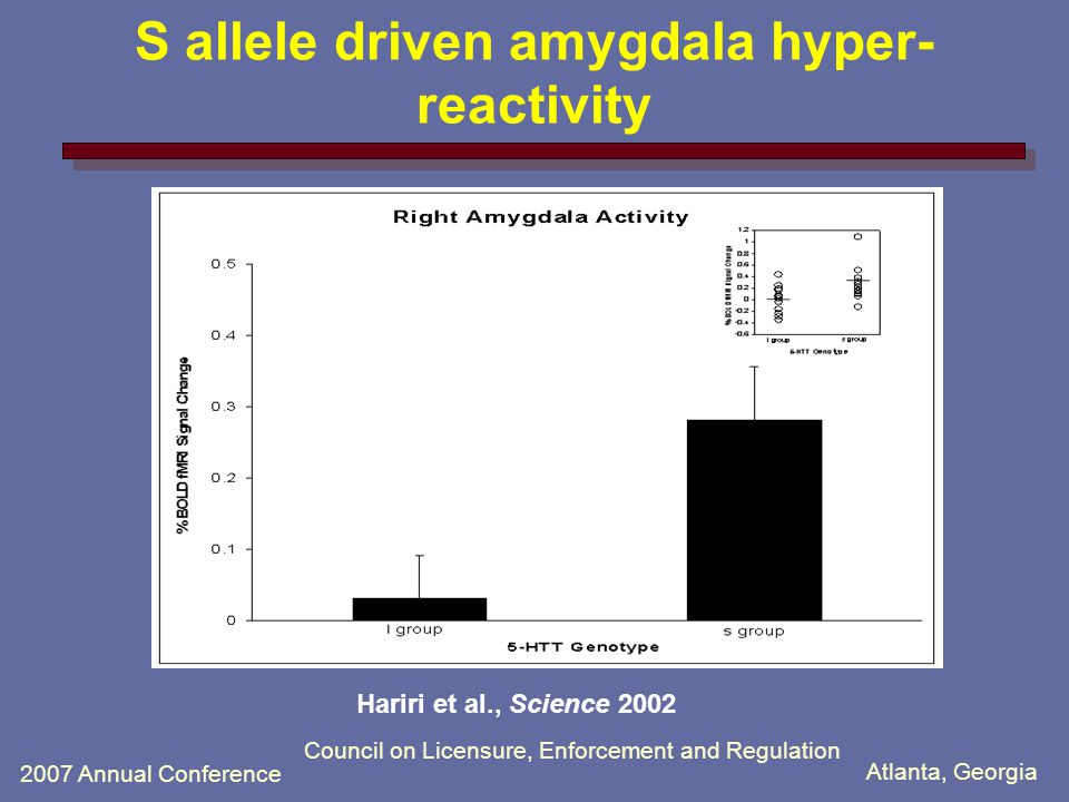Atlanta, Georgia 2007 Annual Conference Council on Licensure, Enforcement and Regulation 5-HTTLPR S allele driven amygdala hyper-reactivity to environmental cues Hariri et al., Science 2002