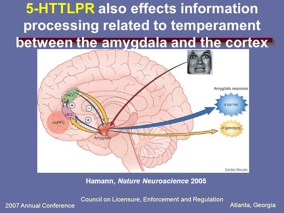 Atlanta, Georgia 2007 Annual Conference Council on Licensure, Enforcement and Regulation S allele driven amygdala hyper- reactivity Hariri et al., Science 2002