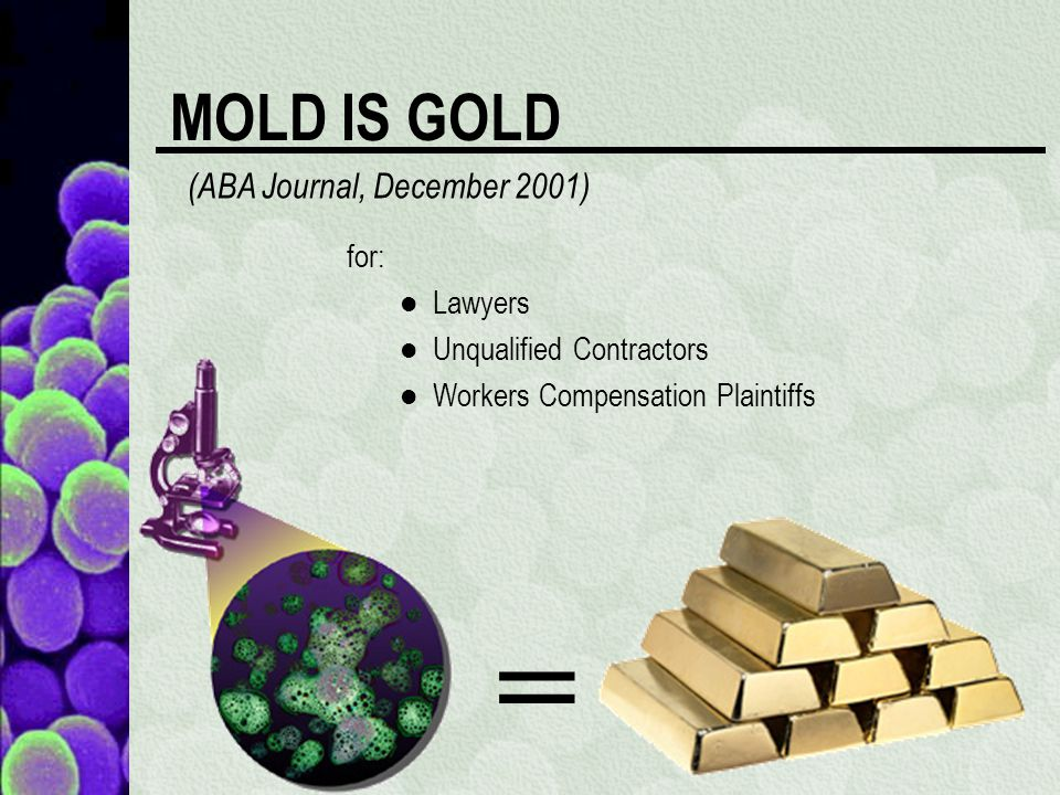 MOLD IS GOLD for: Lawyers Unqualified Contractors Workers Compensation Plaintiffs (ABA Journal, December 2001) =