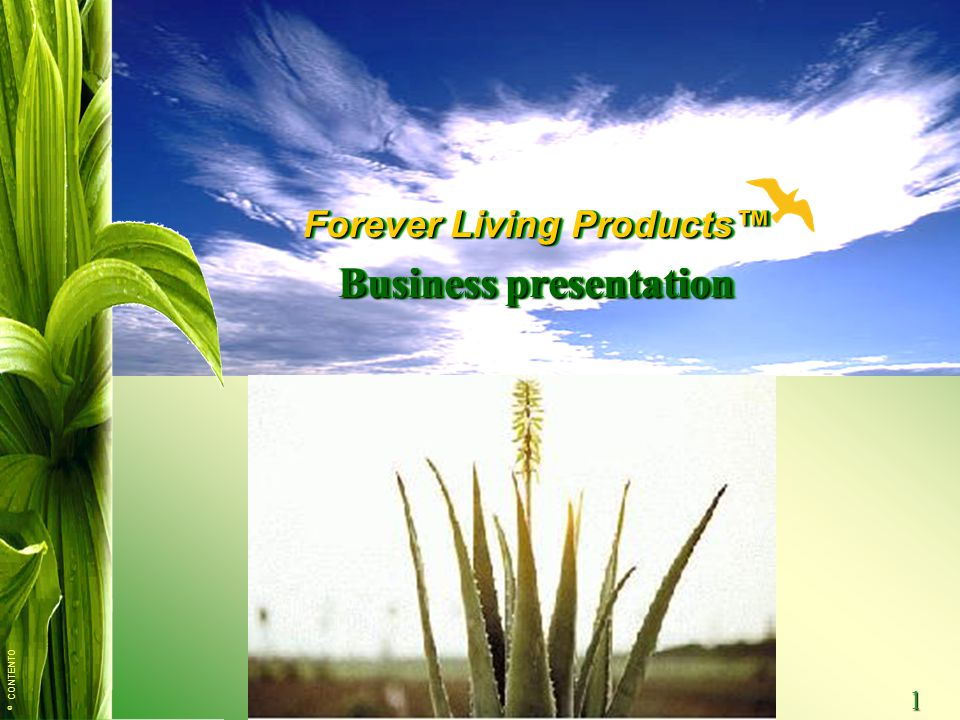 © CONTENTO 1 Forever Living Products™ Business presentation