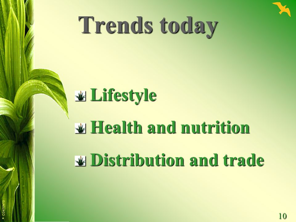 © CONTENTO 10 Trends today Lifestyle Lifestyle Health and nutrition Health and nutrition Distribution and trade Distribution and trade