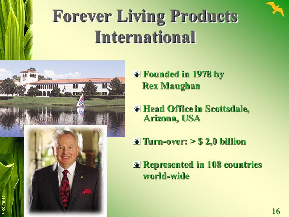 © CONTENTO 16 Forever Living Products International Founded in 1978 by Founded in 1978 by Rex Maughan Rex Maughan Head Office in Scottsdale, Arizona, USA Head Office in Scottsdale, Arizona, USA Turn-over: > $ 2,0 billion Turn-over: > $ 2,0 billion Represented in 108 countries Represented in 108 countries world-wide world-wide
