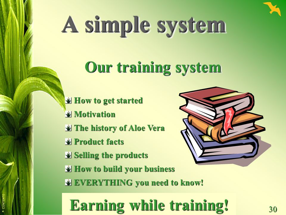 © CONTENTO 30 How to get started Motivation The history of Aloe Vera Product facts Selling the products How to build your business EVERYTHING you need to know.