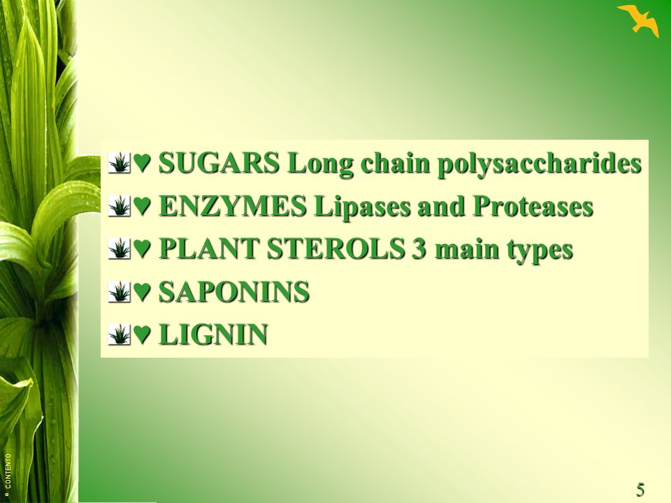© CONTENTO 5 ♥ SUGARS Long chain polysaccharides ♥ ENZYMES Lipases and Proteases ♥ PLANT STEROLS 3 main types ♥ SAPONINS ♥ LIGNIN