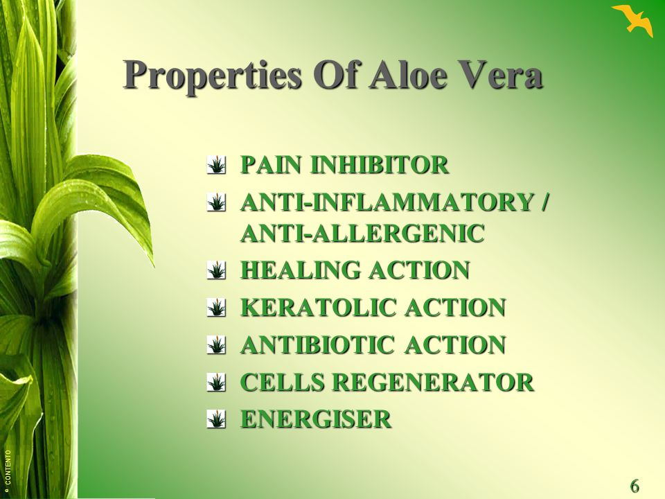 © CONTENTO 6 Properties Of Aloe Vera PAIN INHIBITOR ANTI-INFLAMMATORY / ANTI-ALLERGENIC HEALING ACTION KERATOLIC ACTION ANTIBIOTIC ACTION CELLS REGENERATOR ENERGISER
