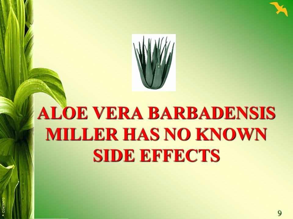 © CONTENTO 9 ALOE VERA BARBADENSIS MILLER HAS NO KNOWN SIDE EFFECTS