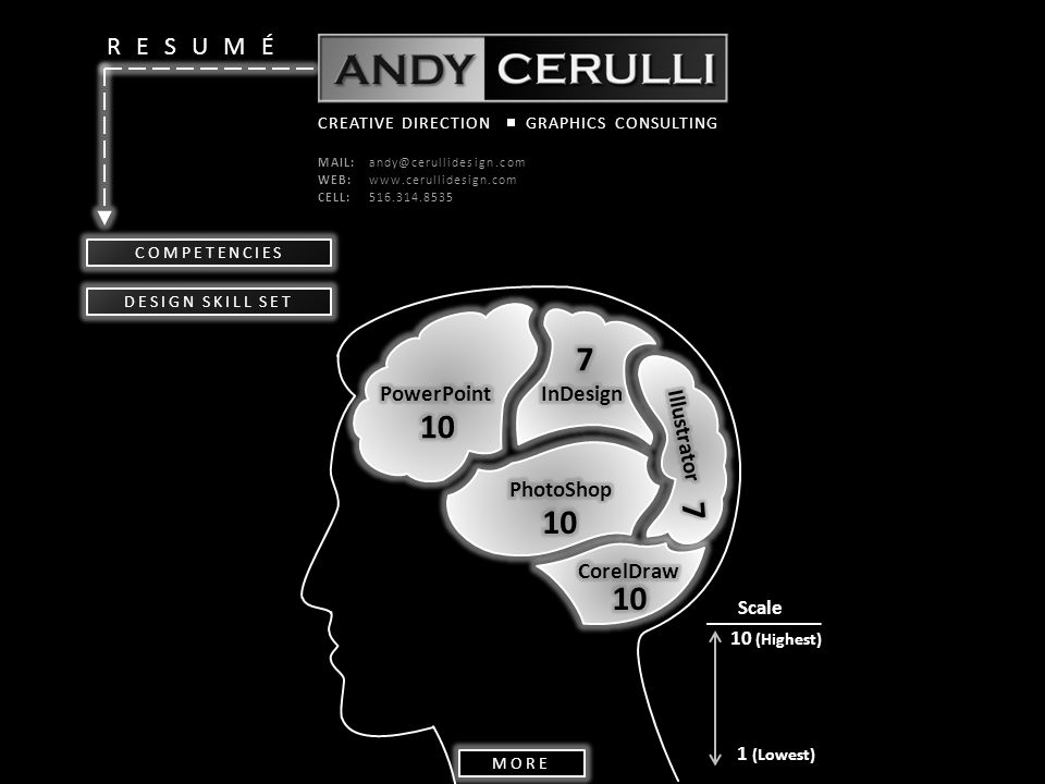 RESUMÉ CREATIVE DIRECTIONGRAPHICS CONSULTING MAIL:andy@cerullidesign.com WEB:www.cerullidesign.com CELL:516.314.8535 COMPETENCIES Scale 1 (Lowest) 10