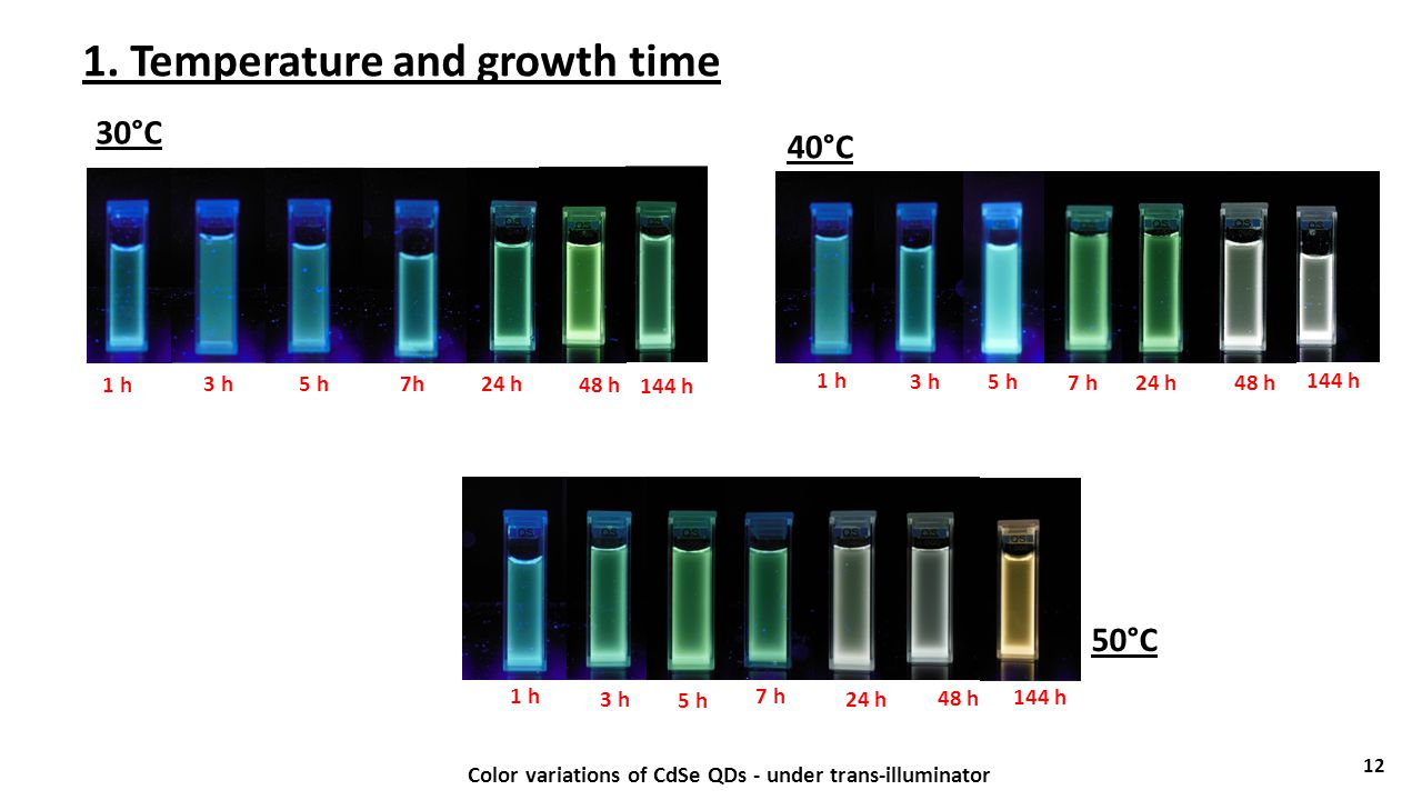 1. Temperature and growth time 12 Color variations of CdSe QDs - under trans-illuminator 1 h 3 h5 h7h24 h 48 h 144 h 1 h 3 h 5 h 7 h24 h 48 h 144 h 1
