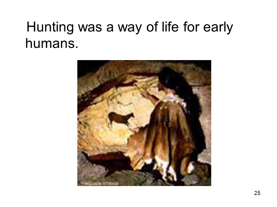 25 Hunting was a way of life for early humans.
