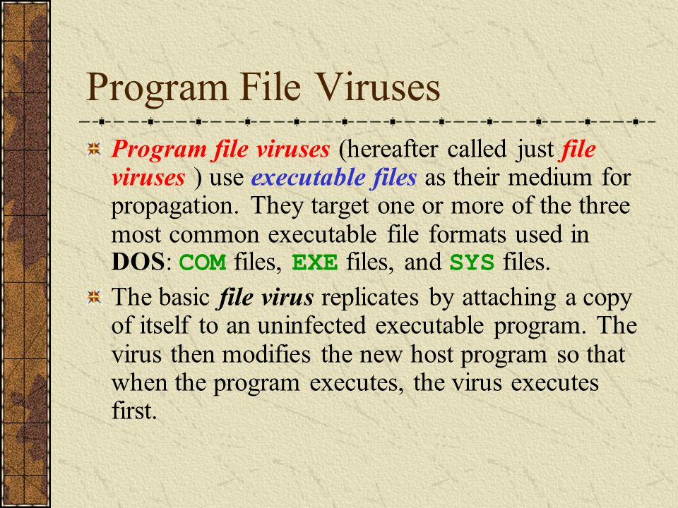 Program file viruses (hereafter called just file viruses ) use executable files as their medium for propagation. They target one or more of the three