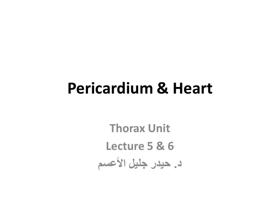 Pericardium & Heart Thorax Unit Lecture 5 & 6 د. حيدر جليل الأعسم