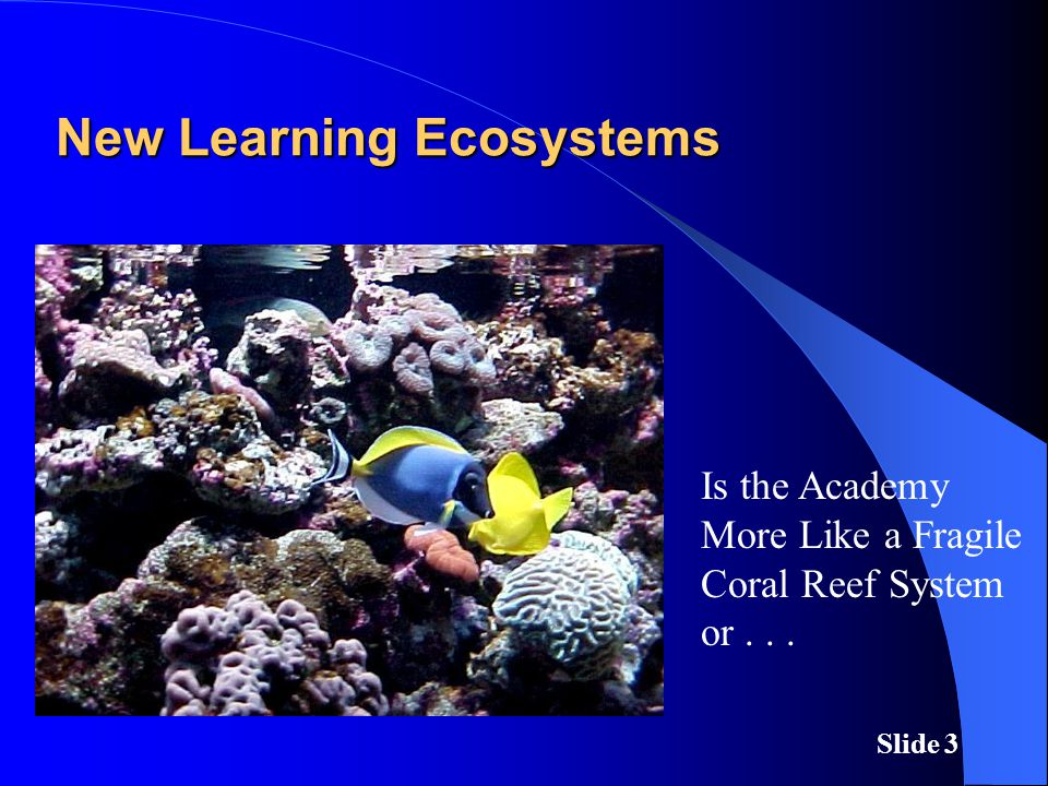 Slide 3 New Learning Ecosystems Is the Academy More Like a Fragile Coral Reef System or...
