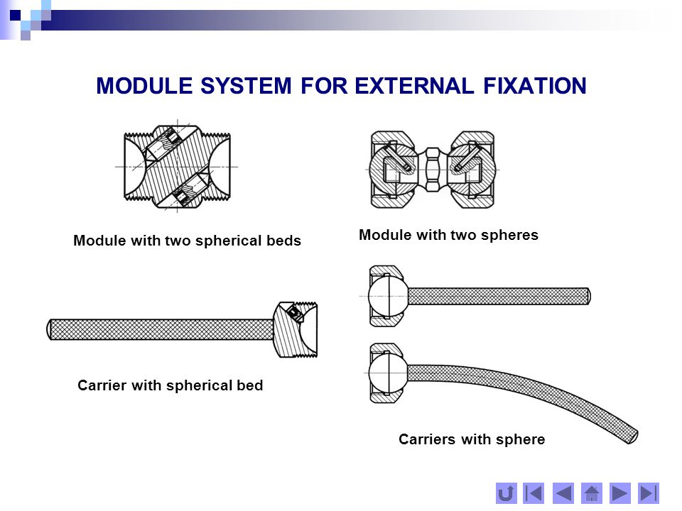 MODULE SYSTEM FOR EXTERNAL FIXATION Connections of screw-holders