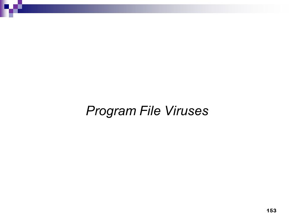 153 Program File Viruses