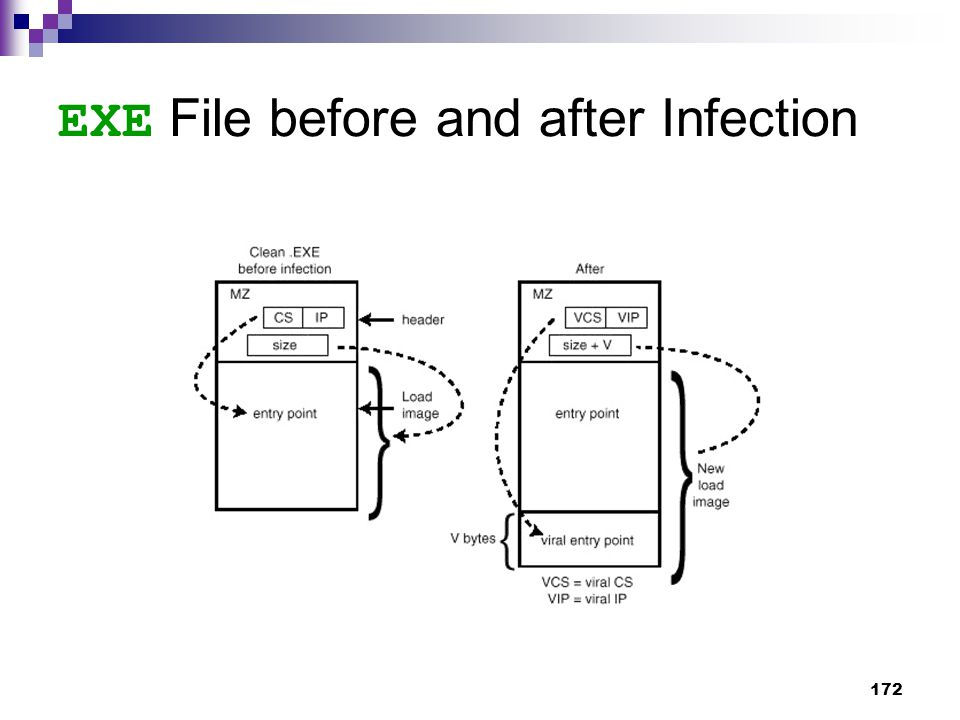 172 EXE File before and after Infection