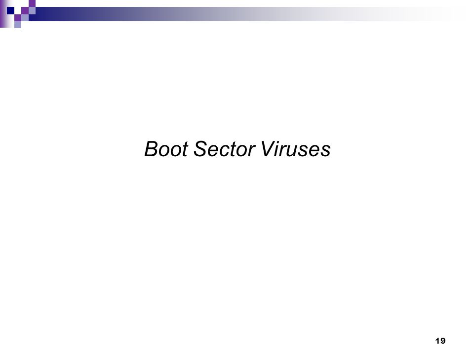 19 Boot Sector Viruses