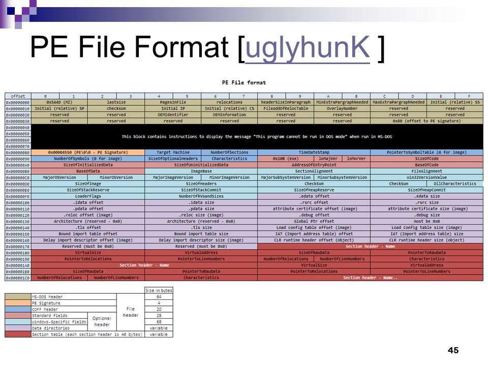 45 PE File Format [uglyhunK ]uglyhunK