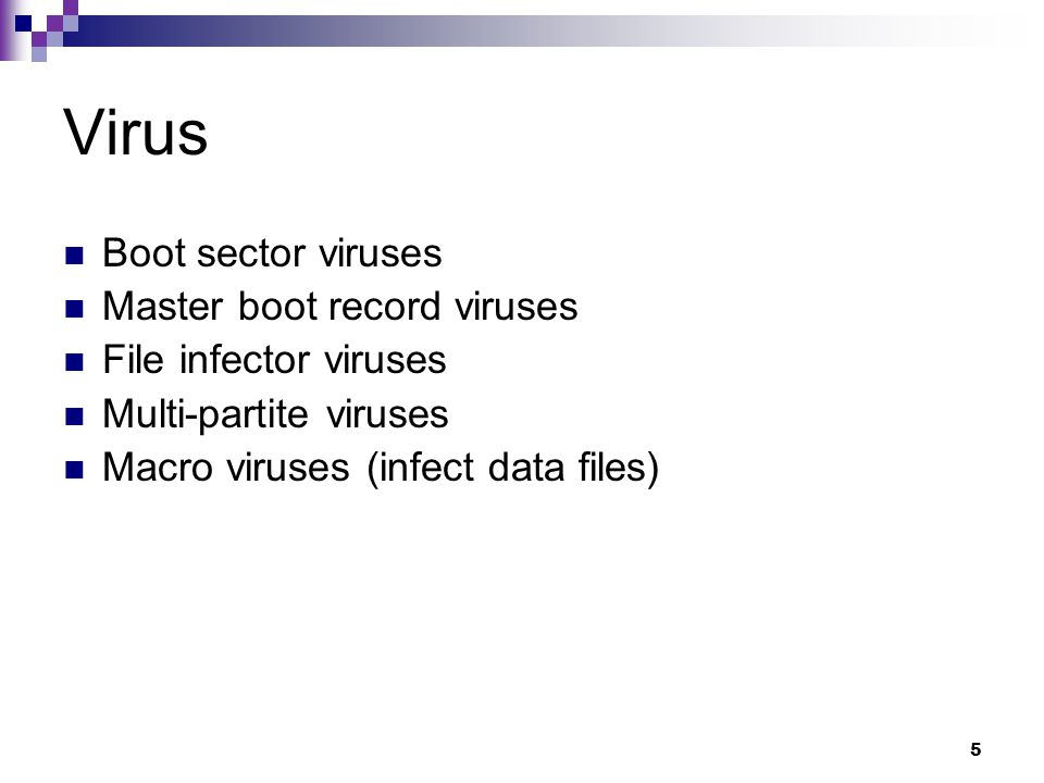 5 Virus Boot sector viruses Master boot record viruses File infector viruses Multi-partite viruses Macro viruses (infect data files)