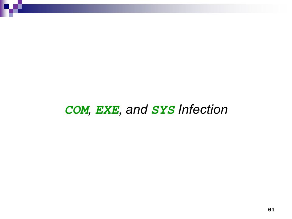 61 COM, EXE, and SYS Infection