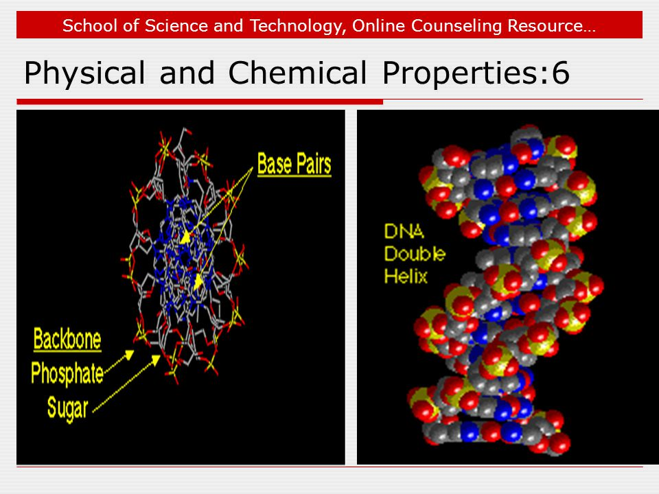 School of Science and Technology, Online Counseling Resource… Physical and Chemical Properties:6
