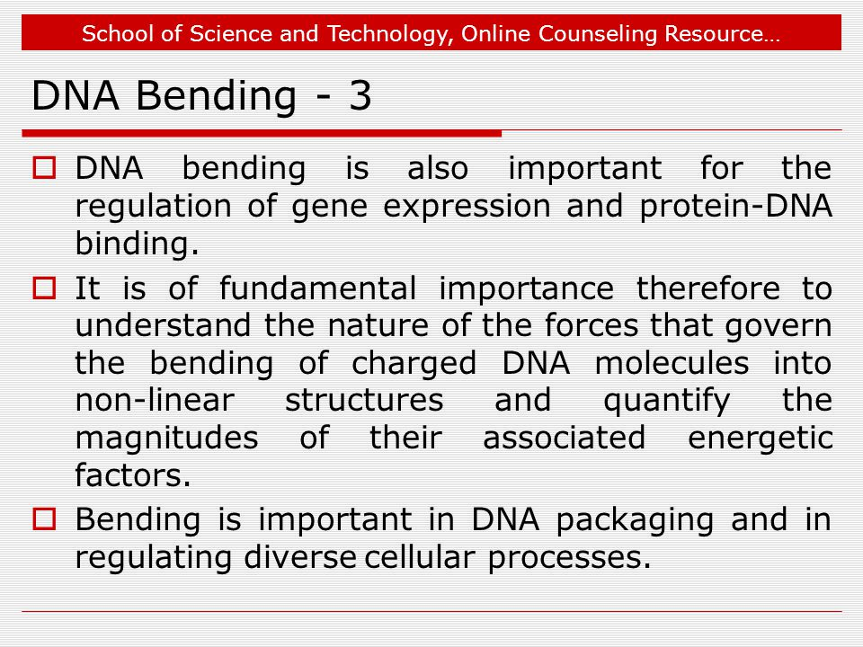 School of Science and Technology, Online Counseling Resource… DNA Bending - 3  DNA bending is also important for the regulation of gene expression and protein-DNA binding.