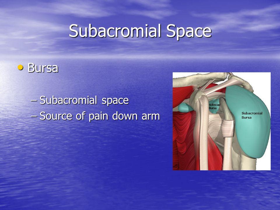 Trauma Shoulder Dislocation Shoulder Dislocation Fracture Fracture