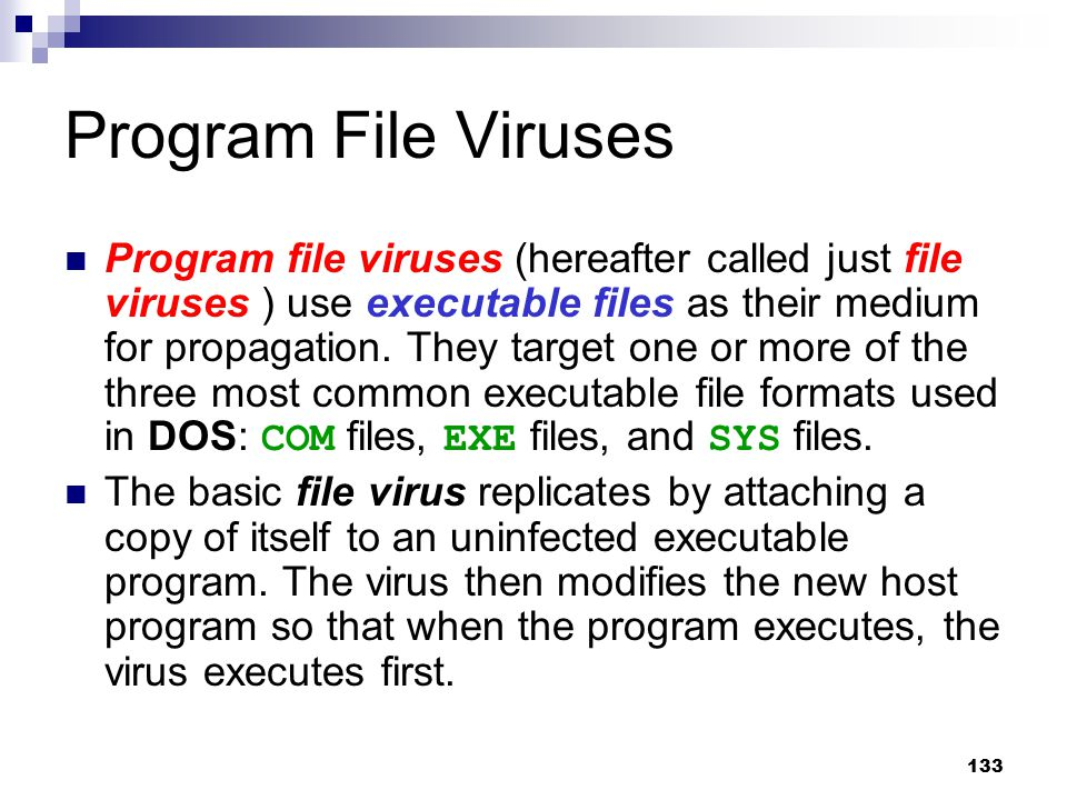 133 Program File Viruses Program file viruses (hereafter called just file viruses ) use executable files as their medium for propagation. They target