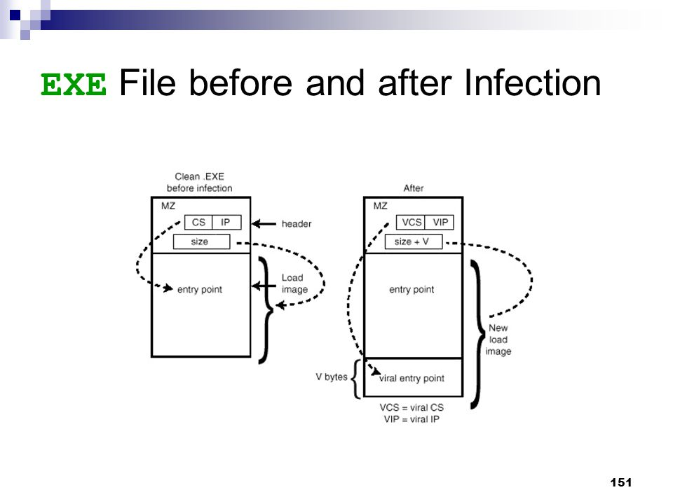151 EXE File before and after Infection