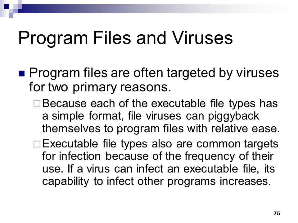 75 Program Files and Viruses Program files are often targeted by viruses for two primary reasons.  Because each of the executable file types has a si