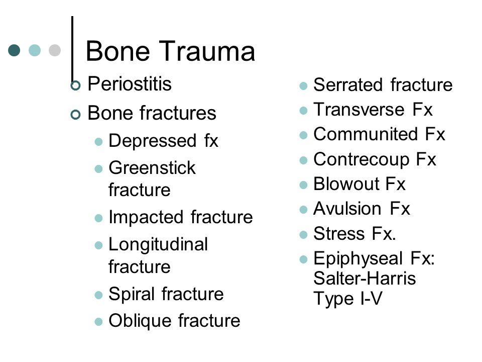 Hip/pelvis ilium ischiumHead of femur Greater trochanter Iliac crest ASIS AIIS ILIAC TUBEROSITY
