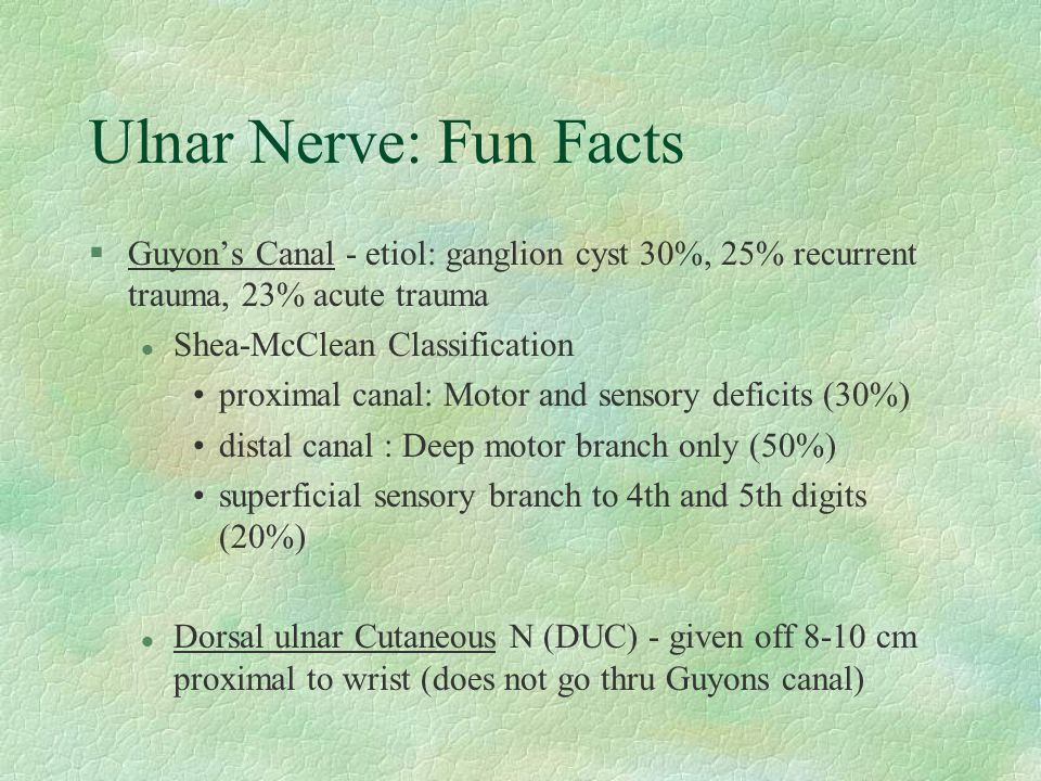 Ulnar Nerve: Fun Facts §Guyon's Canal - etiol: ganglion cyst 30%, 25% recurrent trauma, 23% acute trauma l Shea-McClean Classification proximal canal: