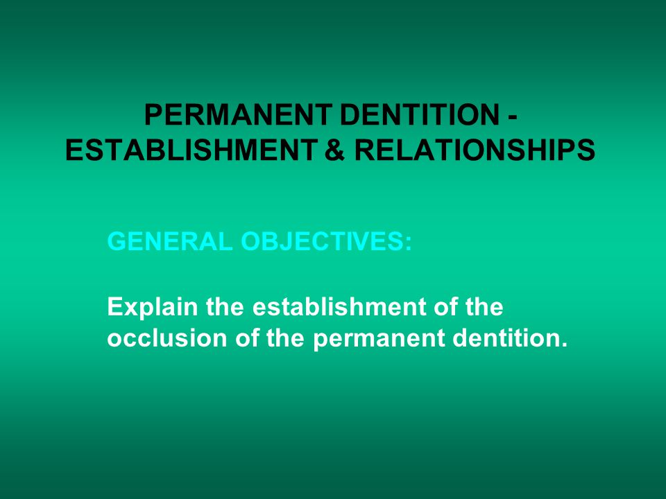 PERMANENT DENTITION - ESTABLISHMENT & RELATIONSHIPS GENERAL OBJECTIVES: Explain the establishment of the occlusion of the permanent dentition.