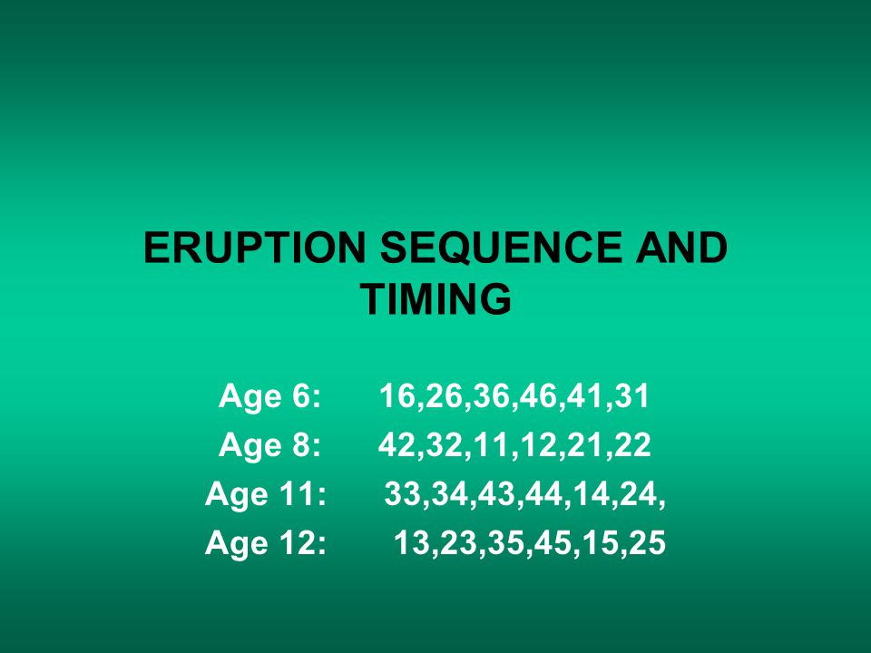 ERUPTION SEQUENCE AND TIMING Age 6: 16,26,36,46,41,31 Age 8: 42,32,11,12,21,22 Age 11: 33,34,43,44,14,24, Age 12: 13,23,35,45,15,25