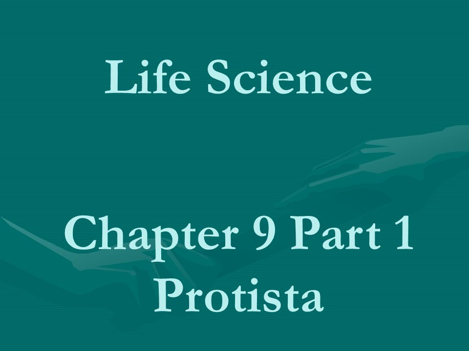 Life Science Chapter 9 Part 1 Protista