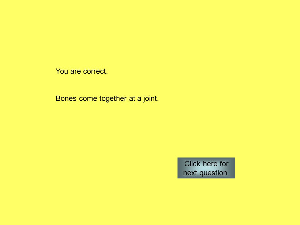 You are correct. Bones come together at a joint. Click here for next question.