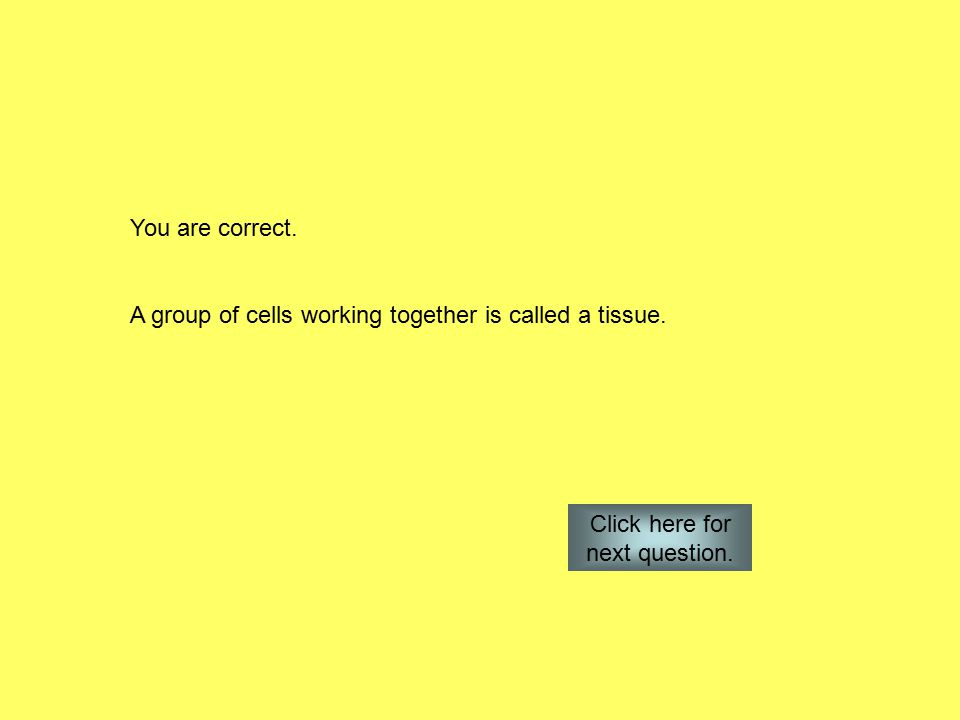You are correct. A group of cells working together is called a tissue.