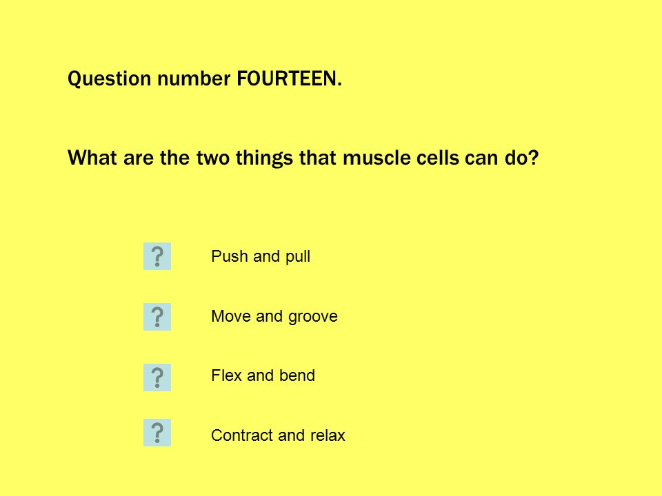 Question number FOURTEEN. What are the two things that muscle cells can do.
