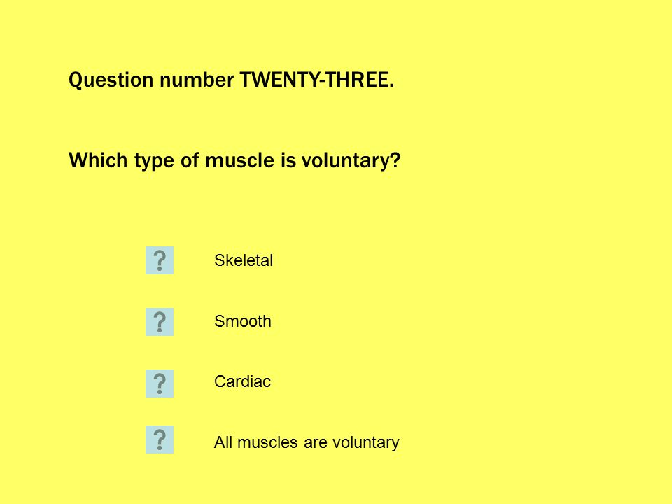 Question number TWENTY-THREE. Which type of muscle is voluntary.